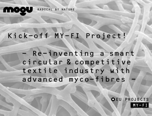 Re-inventing the textile industry with advanced myco-fibres